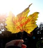 Żółty jesień liść klonowy z wpisowym ` Cześć, szkoła! ` W dziewczyny ` s ręce jarzy się w promieniach jaskrawy słońce nowy rok sz Obrazy Royalty Free