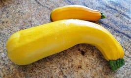 Żółty kabaczek zdjęcie stock