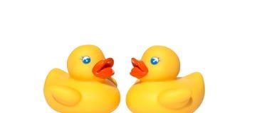 Żółty kaczki dopłynięcie Obraz Royalty Free