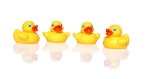 Żółty kaczki dopłynięcie Fotografia Royalty Free