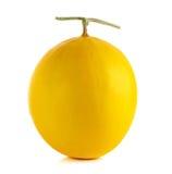 Żółty kantalup na białym tle zdjęcie stock