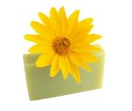 Żółty kwiat i zielony mydło na bielu Obrazy Royalty Free