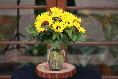 Żółty kwiatu przygotowania obraz royalty free