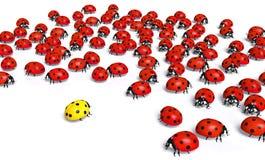 Żółty ladybird bagatelizują ilustracja wektor