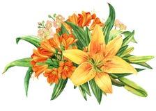 Żółty leluja kwiatu akwareli bukiet Obrazy Royalty Free