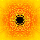 Żółty mandala kwiatu centrum Koncentryczny kalejdoskop zdjęcie stock