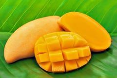 Żółty mango na zielonym bananowym liściu Fotografia Stock