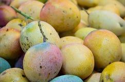 Żółty mango w rynku Fotografia Royalty Free