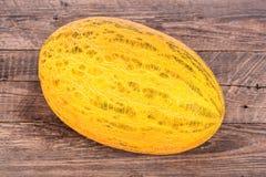 Żółty melon Zdjęcie Stock