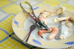 Żółty obiadowy talerz z smakowitym homara pazurem i Obrazy Royalty Free