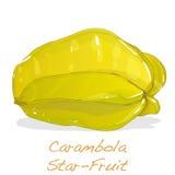 Żółty owocowy carambola wektor ilustracji