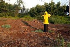 Żółty Pożarniczy hydrant Zdjęcia Stock