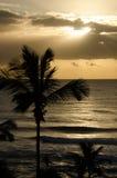 Żółty wschód słońca Obraz Royalty Free