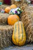 Żółty zucchini na stercie siano Zdjęcie Royalty Free