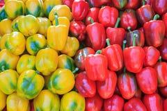Żółtych i czerwonych dzwonkowych pepers zamknięty up Obraz Stock