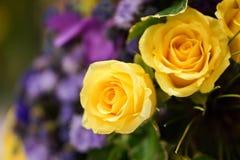 Żółtych róż bukiet zdjęcia stock