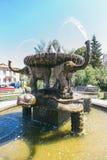 Żółw fontanna zdjęcia royalty free