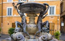 Żółw fontanna Obrazy Stock