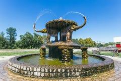 Żółw fontanna zdjęcie stock
