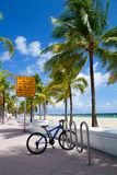 Żółw gniazduje plażę, fort lauderdale, Floryda usa Obraz Royalty Free