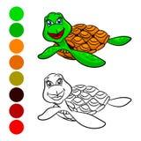 Żółw kolorystyki książka royalty ilustracja
