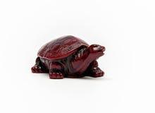 Żółw postać odizolowywająca Fotografia Royalty Free