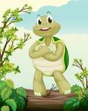 Żółw pozycja na suchym drewnie royalty ilustracja