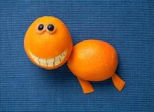 Żółw robić pomarańcze Obrazy Stock