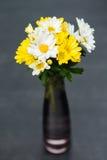Żółci i Biali kwiaty Zdjęcia Royalty Free