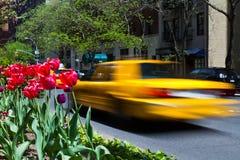 Żółta taksówka Zdjęcie Royalty Free