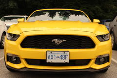 Żółty mustang Obrazy Stock