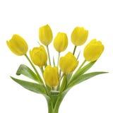 Żółty Tulipanowy bukiet zdjęcia royalty free