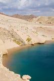 Żółw zatoka w Egipt zdjęcia stock