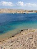 Żółw zatoka w Egipt Obrazy Royalty Free