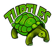 Żółwia logo Ilustracji