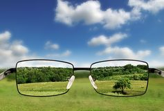 Óculos de sol. Fotos de Stock