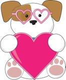 Óculos de sol do amor de filhote de cachorro Imagens de Stock