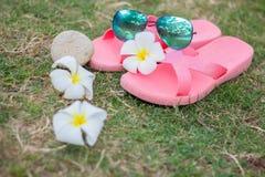 Óculos de sol em ardósias cor-de-rosa Imagens de Stock Royalty Free