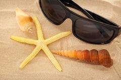 Óculos de sol, seastar e conchas do mar na areia fotos de stock