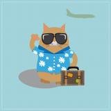 Óculos de sol vestindo do turista do gato e uma camisa com fotos de stock royalty free