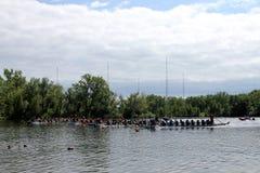 łódkowata smoka festiwalu rasa Obraz Stock
