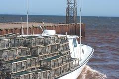 łódkowaty homar Fotografia Stock