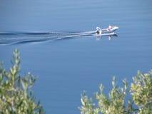 łódkowaty morze Fotografia Stock