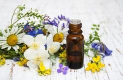 Óleo da natureza com wildflowers fotografia de stock