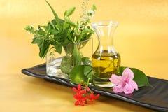 Óleo de Ayurvedic ou óleo de cabelo erval com ervas fotos de stock royalty free