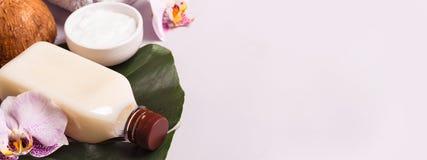 Óleo de coco e folhas tropicais Conceito dos termas dos cuidados capilares imagens de stock