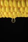 Óleo de milho Imagens de Stock Royalty Free