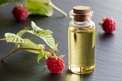 Óleo de semente da framboesa em uma garrafa com framboesas frescas Fotografia de Stock Royalty Free