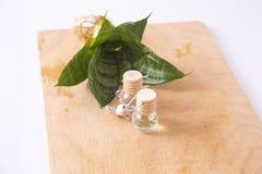 Óleo do aroma Imagem de Stock
