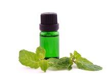 Óleo do aroma da pastilha de hortelã no fundo branco Fotografia de Stock Royalty Free